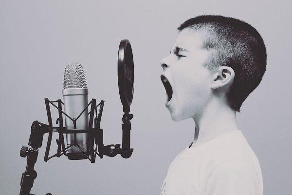Голос и наш характер.jpg